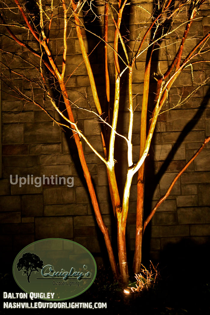 Up-lighting-trees-nashville-outdoor-lighting